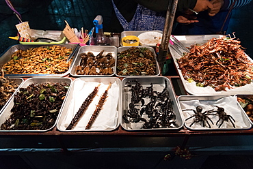 Street food of deep fried insects and bugs, Bangkok, Thailand, Southeast Asia, Asia