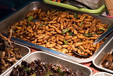 Street food of maggots and crickets, Bangkok, Thailand, Southeast Asia, Asia