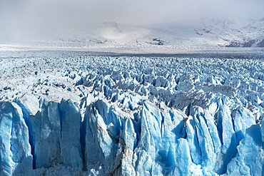 Close up on the ice of Perito Moreno glacier, Los Glaciares National Park, UNESCO World Heritage Site, Santa Cruz, Argentina, South America