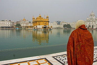 Sikh devotee of the Golden Temple, Amritsar, the Punjab, India, Asia