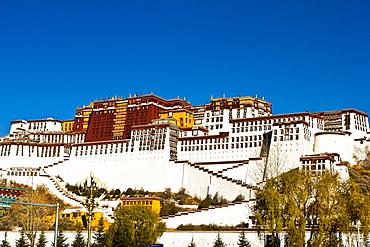 The Potala Palace under blue sky, UNESCO World Heritage Site, Lhasa, Tibet, China, Asia
