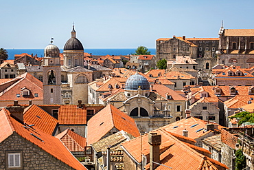 Looking across Dubrovnik's terracotta tiled rooftops, Dubrovnik, Croatia, Europe