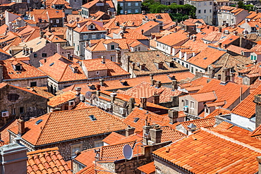 Looking across Dubrovnik's terracotta tiled rooftops, Dubrovnik, Croata, Europe