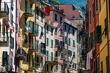 The colourful buildings of Riomaggiore's main street in the early morning sunlight, Cinque Terre, UNESCO World Heritage Site, Liguria, Italy, Europe