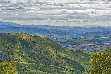 Forest in autumn, Monte Cucco Park, Apennines, Umbria, Italy, Europe