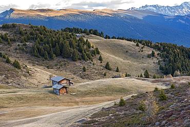 Alms (mountain huts) in the fields, Alpe di Siusi, Trentino, Italy, Europe