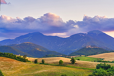 Countryside at sunset, Marche, Italy, Europe
