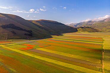 Italy, Umbria, Apennines, Sibillini mountain range, Aerial view of Piano Grande of Castelluccio di Norcia plateau in Summer
