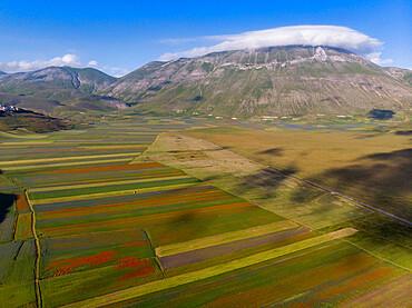 Italy, Umbria, Apennines, Sibillini mountain range, Aerial view of Piano Grande of Castelluccio di Norcia plateau and mount Vettore