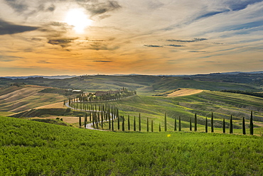 Baccoleno farmhouse, Val d'Orcia (Orcia Valley), UNESCO World Heritage Site, Tuscany, Italy, Europe