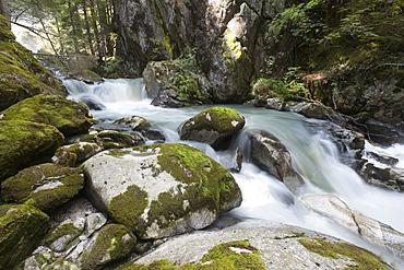River Sarca, Genova Valley, Trentino, Italy, Europe