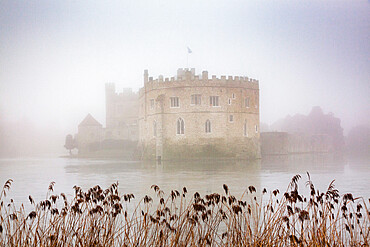 Foggy day in the park surrounding Leeds Castle in Kent, England
