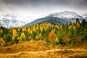 Rodnei Mountains in early winter, Carpathians, Romania, Europe