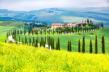 Farmhouse in green summer landscape near Crete Senesi, Tuscany, Italy