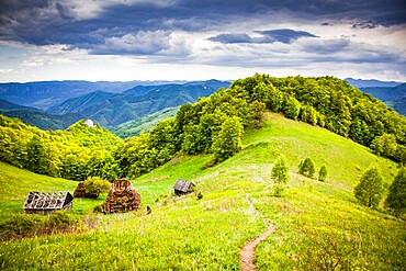 Rural landscape with traditional thatched roof wooden cottages in Dumesti, Apuseni mountains, Romania, Europe