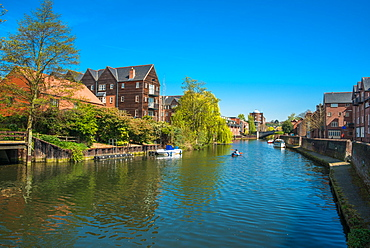 River Wensum, Norwich, Norfolk, England, United Kingdom, Europe