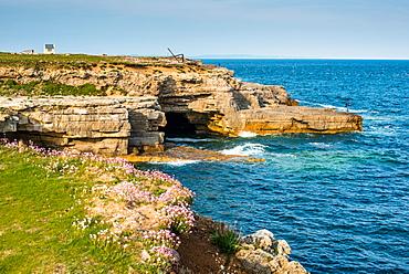 Jurassic oolitic limestone cliffs at Portland Bill in Dorset, UNESCO World Heritage Site, Dorset, England, United Kingdom, Europe