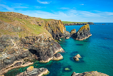 Rocky coastal scenery at Kynance Cove on the Lizard Peninsula in Cornwall, England, United Kingdom, Europe