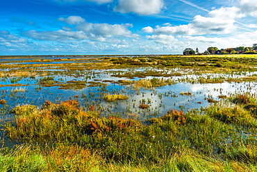 Morston salt Marshes seen from the Blakeney to Morston coastal path, Norfolk, England, United Kingdom, Europe