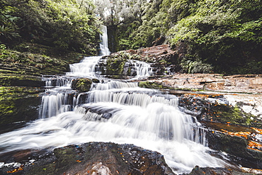 McLean Falls Walkway, Catlins Forest Park, South Island, New Zealand, Pacific - 1268-17