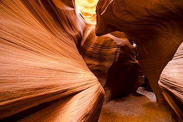 Secret Canyon, Page, Arizona, United States of America, North America - 1268-20