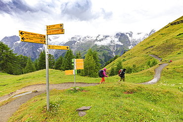 Hikers along the panoramic trail of Ferret Valley, Bertone Hut, Ferret Valley, Courmayeur, Aosta Valley, Italy, Europe
