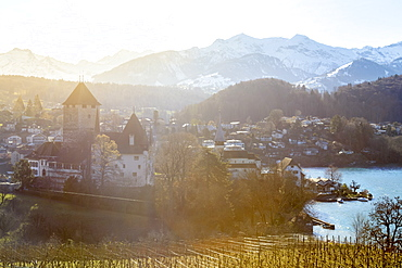 Sunny day at the castle of Spiez, Canton of Bern, Switzerland, Europe