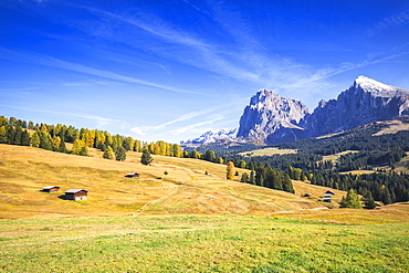 Autumn color at Seiser Alm, Dolomites, province of Bolzano, South Tirol, Italy, Europe