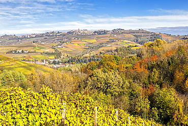 Village of Diano d'Alba in autumn, Barolo wine region, Langhe, Piedmont, Italy, Europe