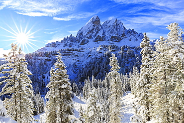 Sass de Putia and forest after a snowfall, Funes Valley, Sudtirol (South Tyrol), Dolomites, Italy, Europe
