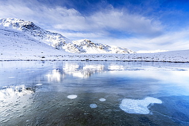 Ice bubbles on the icy surface of an alpine lake, Stelvio Pass, Valtellina, Lombardy, Italy, Europe