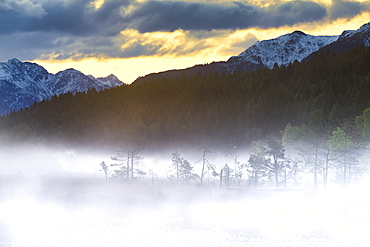 Foggy sunrise at the pond in the Pian di Gembro reserve, Pian di Gembro, Valtellina, Lombardy, Italy, Europe