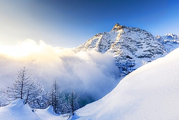 Wave of clouds illuminated by sunset in winter, Valmalenco, Valtellina, Lombardy, Italy, Europe