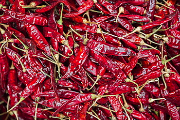 Chillies for sale at a spice market in Fort Kochi (Cochin), Kerala, India, Asia