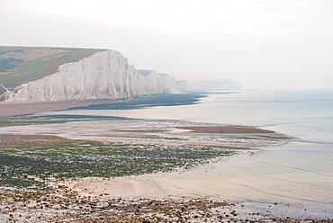 Seven Sisters chalk cliffs, Cuckmere Haven, South Downs National Park, East Sussex, England, United Kingdom, Europe