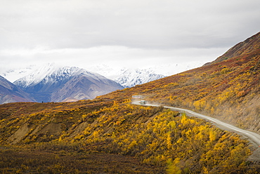 Camper buses driving into the heart of Denali National Park, Alaska, United States of America, North America
