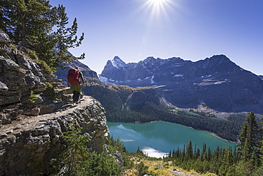 Hiker walking on the Alpine circuit trail, Lake O'Hara, Yoho National Park, UNESCO World Heritage Site, Canadian Rockies, Alberta, Canada, North America