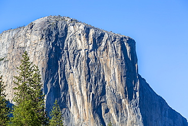El Capitan in Yosemite Valley, UNESCO World Heritage Site, California, United States of America, North America