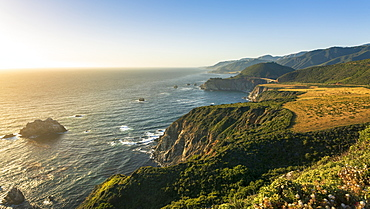 The Pacific coast in Pfeiffer Big Sur State Park between Los Angeles and San Francisco, California, United States of America, North America