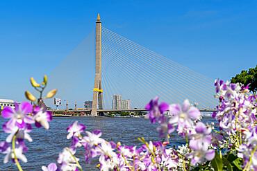 Rama VIII Bridge from Santi Chai Prakan Public Park, Bangkok, Thailand, Southeast Asia, Asia