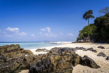 Rocky Bamboo Beach with palm tree, Maya Bay Phi Phi Island, Krabi Province, Thailand, Southeast Asia, Asia