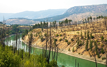 View of barren land following recent fire near Kamloops, British Columbia, Canada, North America