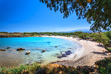 Beach Canteen Iguana, Crete, Greek Islands, Greece, Europe