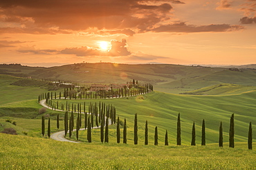 Sunset over the Agriturismo Baccoleno and winding path with cypress trees, Asciano in Tuscany, Italy, Europe