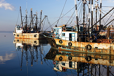 Fishing boats in the port, Cienfuegos, UNESCO World Heritage Site, Cuba, West Indies, Caribbean, Central America