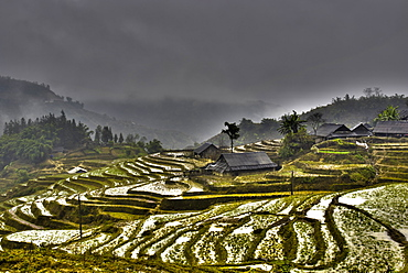 Sapa, Vietnam, Indochina, Southeast Asia, Asia