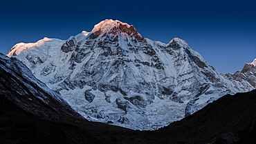 The first rays of light on the summit of Annapurna South, Himalayas, Nepal, Asia