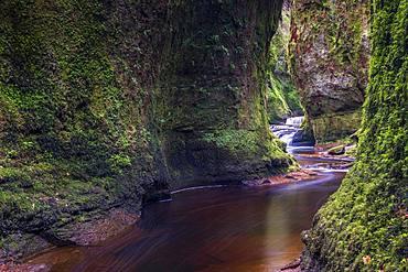 The gorge at Finnich Glen (Devils Pulpit) near Killearn, Stirlingshire, Scotland, United Kingdom, Europe - 1287-75