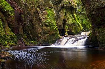 The gorge at Finnich Glen (Devils Pulpit) near Killearn, Stirlingshire, Scotland, United Kingdom, Europe - 1287-77