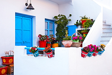 Koufonisi island house decoration with flowering plants, Koufonisi, Cyclades Islands, Greek Islands, Greece, Europe